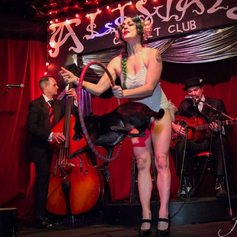 Image result for bayou blues burlesque